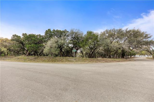 21805 Mockingbird St, Lago Vista, TX 78645 (#4299216) :: Realty Executives - Town & Country