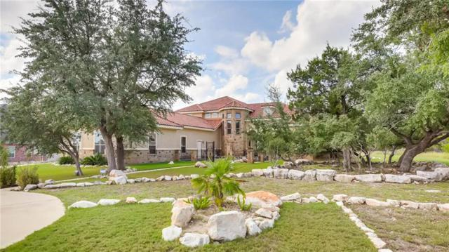 786 Haven Point Loop, New Braunfels, TX 78132 (#4305072) :: The Perry Henderson Group at Berkshire Hathaway Texas Realty