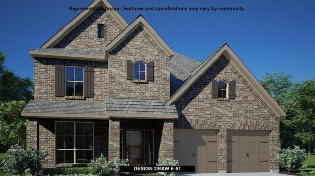 1316 Low Branch Ln, Leander, TX 78641 (#4308945) :: The Perry Henderson Group at Berkshire Hathaway Texas Realty