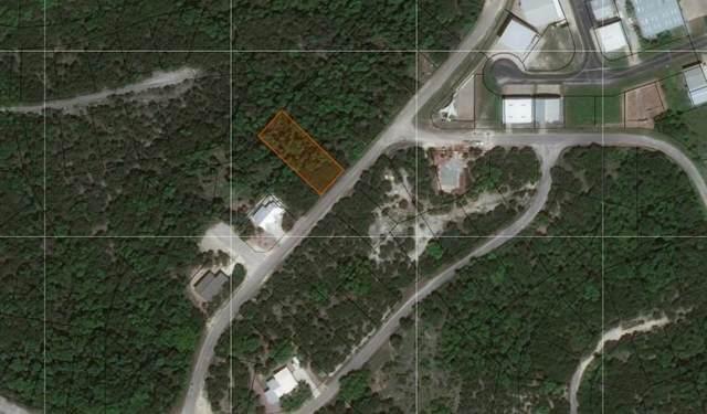 8914 Bar K Ranch Rd, Lago Vista, TX 78645 (#4310955) :: Papasan Real Estate Team @ Keller Williams Realty