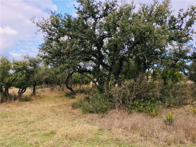 Lot 4 Running Deer Ln, Dripping Springs, TX 78620 (#4312483) :: The Heyl Group at Keller Williams