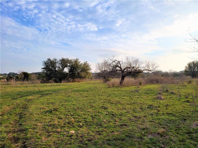 2483 County Road 219, Florence, TX 76527 (#4318577) :: The Perry Henderson Group at Berkshire Hathaway Texas Realty