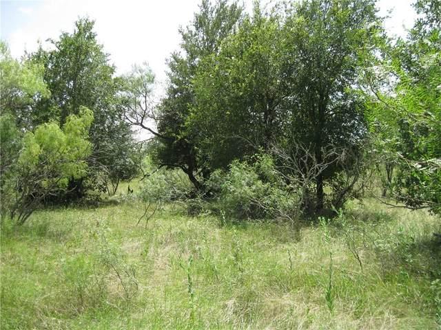 280 Connor Way Ln, Coupland, TX 78615 (#4323022) :: Papasan Real Estate Team @ Keller Williams Realty
