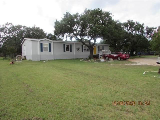 105 Spring View Dr, Johnson City, TX 78636 (#4349400) :: Papasan Real Estate Team @ Keller Williams Realty