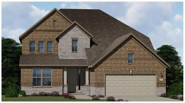 20417 Whimbrel Ct, Pflugerville, TX 78660 (#4352968) :: The Gregory Group