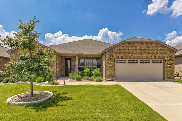 315 Old Blue Mountain Ln, Georgetown, TX 78633 (#4360767) :: Papasan Real Estate Team @ Keller Williams Realty