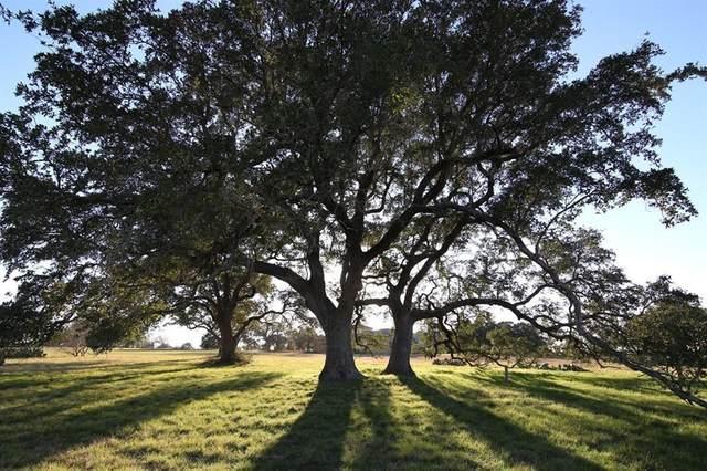 411 Indigo Ln, Georgetown, TX 78628 (#4397983) :: Papasan Real Estate Team @ Keller Williams Realty