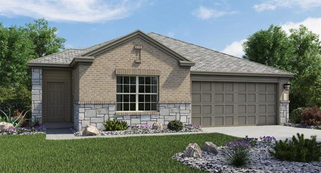 195 Tanzanite Cir, Buda, TX 78610 (#4409401) :: NewHomePrograms.com LLC