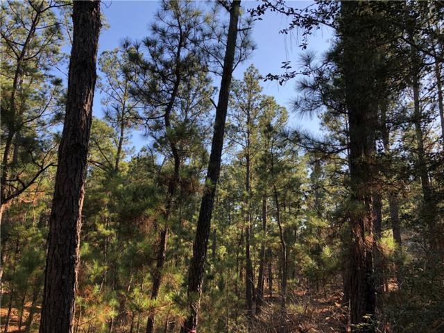 000 E Slash Pine Dr, Bastrop, TX 78602 (#4411114) :: Austin Portfolio Real Estate - The Bucher Group