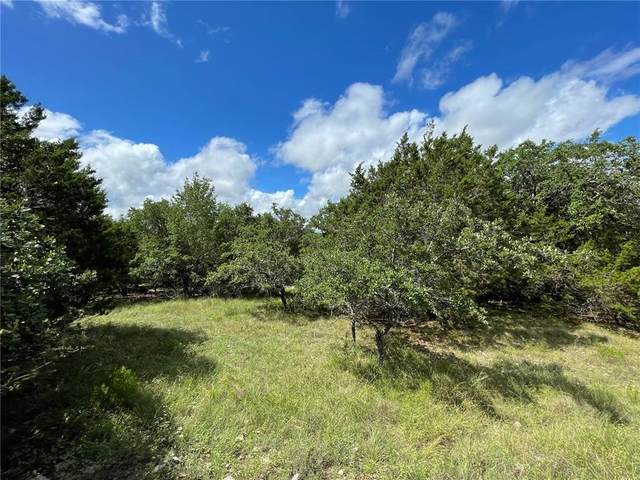 17718 Lake Shore Dr, Dripping Springs, TX 78620 (#4424247) :: The Summers Group