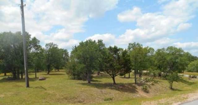 205 Skyline Dr, Kingsland, TX 78639 (#4429443) :: Zina & Co. Real Estate