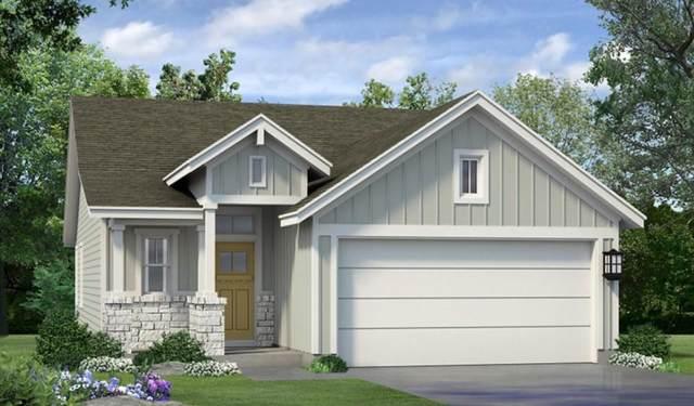 6209 Dumfries Ln, Austin, TX 78744 (#4433526) :: Ben Kinney Real Estate Team