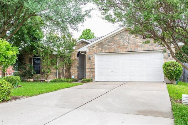1038 Klondike Loop, Round Rock, TX 78665 (#4442269) :: Watters International