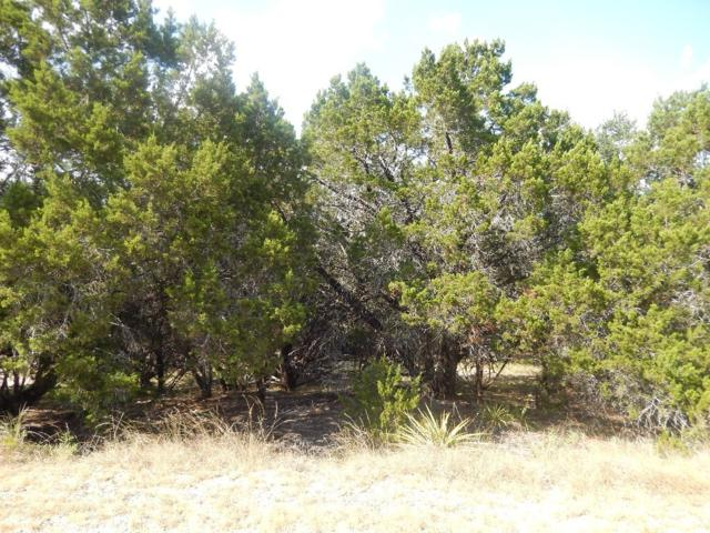 21002 N Ridge St, Lago Vista, TX 78645 (#4442986) :: The ZinaSells Group