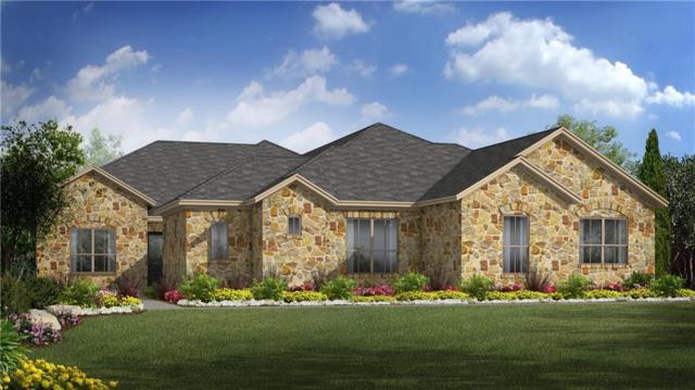 146 Sarah's Spring Cv, Driftwood, TX 78619 (#4444932) :: Papasan Real Estate Team @ Keller Williams Realty