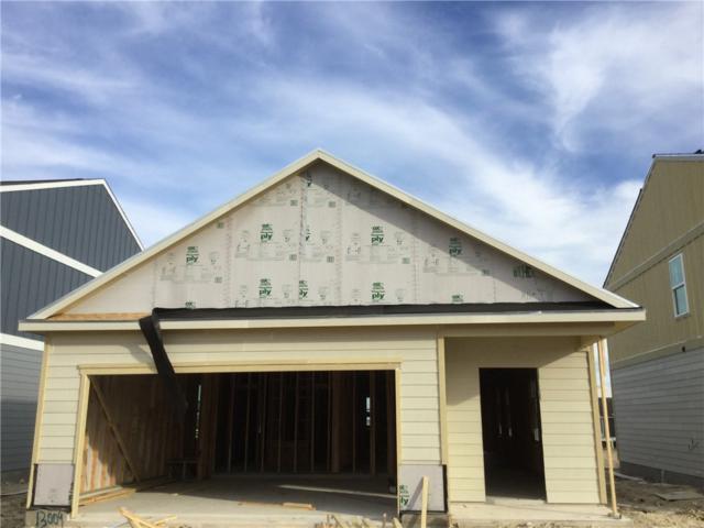 13009 Foreston Dr, Austin, TX 78754 (#4455658) :: Zina & Co. Real Estate