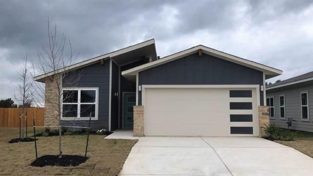 292 Deserti Rd, Leander, TX 78641 (#4456170) :: Zina & Co. Real Estate