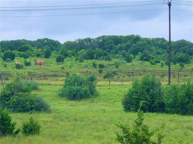 Tract 4 Co Rd 101, Burnet, TX 78611 (#4475026) :: Resident Realty