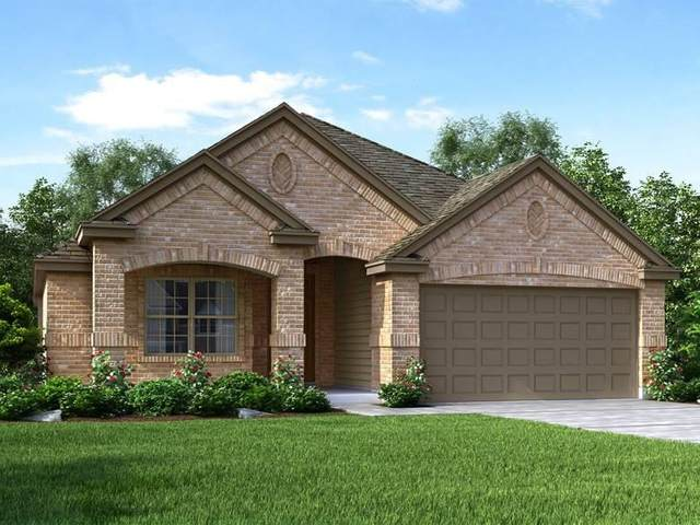 716 Sassafras St, Hutto, TX 78634 (#4475799) :: The Summers Group