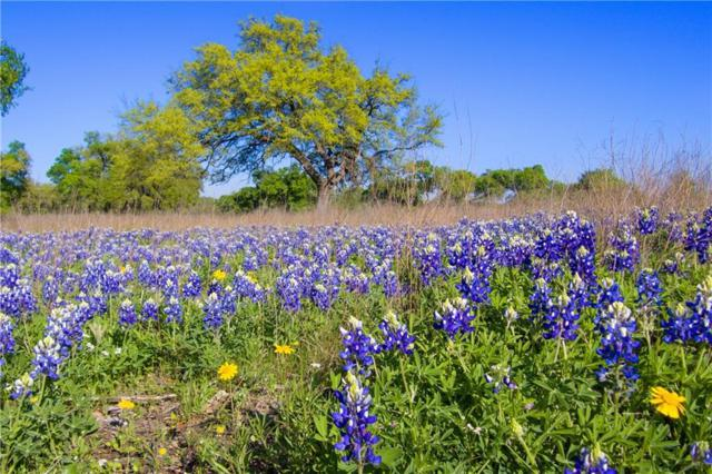 8700 Fm 967 N Side Rd, Buda, TX 78610 (#4486623) :: Papasan Real Estate Team @ Keller Williams Realty