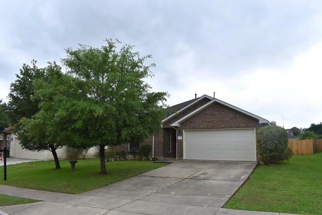 142 Amber Oak Dr, Kyle, TX 78640 (#4499188) :: Watters International