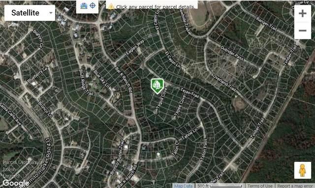 8702 Tegua Cv, Lago Vista, TX 78645 (#4504352) :: Lauren McCoy with David Brodsky Properties