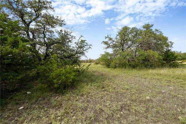 Tract 12-3 Cr 224, Briggs, TX 78608 (#4509754) :: Watters International