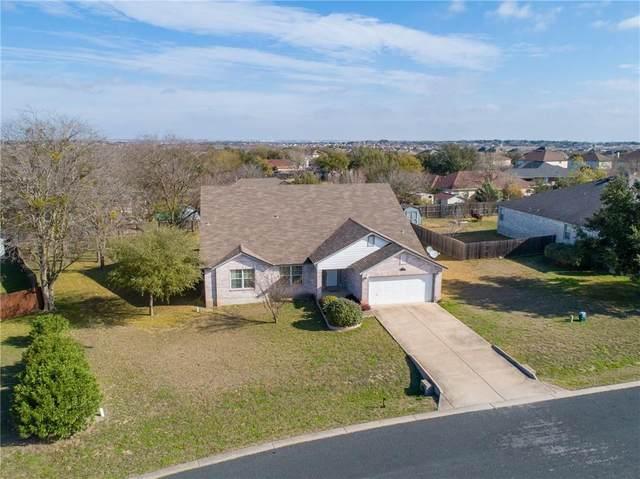 309 Santolina Ln, Round Rock, TX 78664 (#4518014) :: Realty Executives - Town & Country