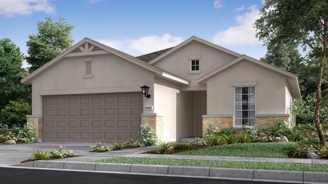 5101 Lunata Way, Round Rock, TX 78665 (#4520633) :: Papasan Real Estate Team @ Keller Williams Realty