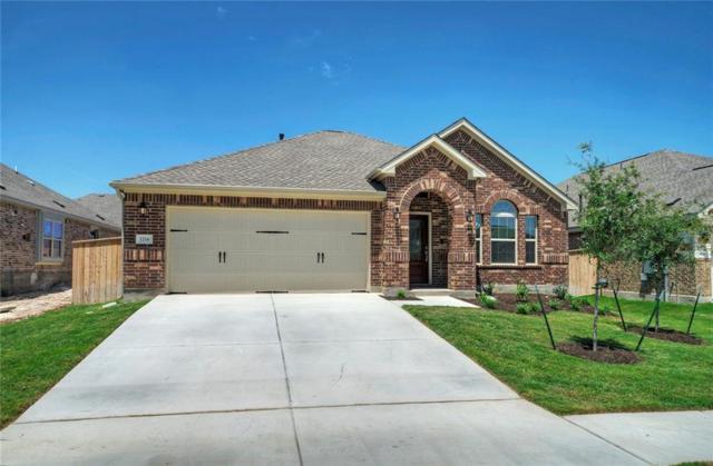 1214 Homer Ln, Round Rock, TX 78665 (#4523561) :: Austin International Group LLC