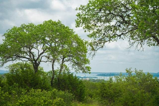 110 Starling Pass, Spring Branch, TX 78070 (#4539306) :: Watters International
