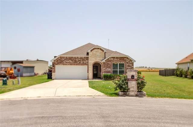 105 Madison Ln, Thrall, TX 76578 (#4548629) :: Papasan Real Estate Team @ Keller Williams Realty