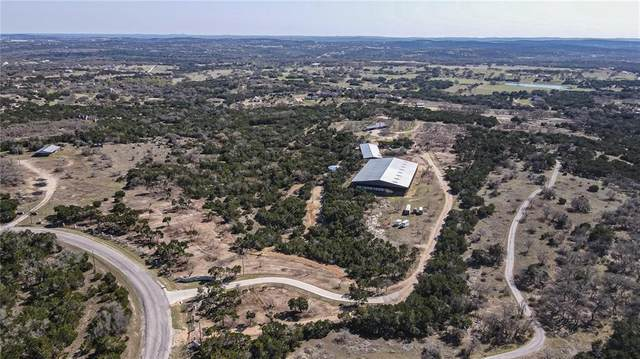 480 S Oak Forest Dr, Dripping Springs, TX 78620 (#4558474) :: The Perry Henderson Group at Berkshire Hathaway Texas Realty
