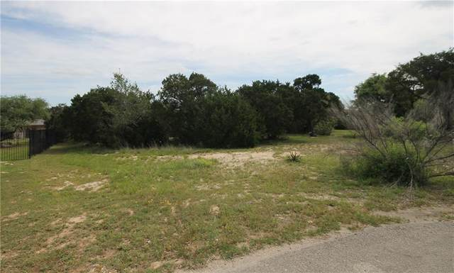 179 Shawnee Trl, Dripping Springs, TX 78620 (#4563641) :: Zina & Co. Real Estate