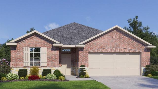 9112 Alex Ln, Austin, TX 78748 (#4576730) :: Papasan Real Estate Team @ Keller Williams Realty