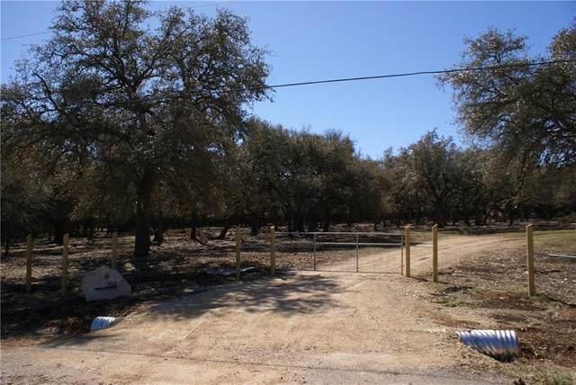 202 Lame Hoss Ln, Driftwood, TX 78619 (#4581195) :: Papasan Real Estate Team @ Keller Williams Realty