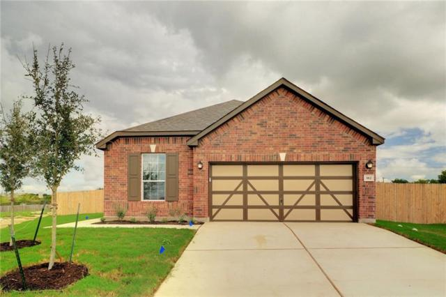 912 Screech Owl Dr, Pflugerville, TX 78660 (#4590929) :: The Heyl Group at Keller Williams