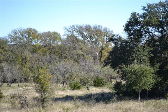 4772 County Road 340, Burnet, TX 78611 (#4593674) :: Papasan Real Estate Team @ Keller Williams Realty