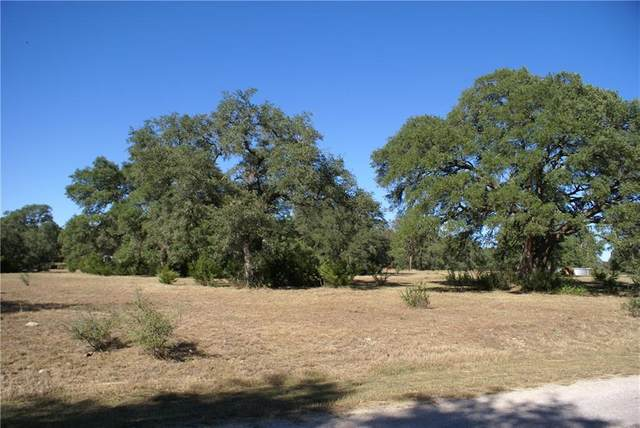 Lot 11 Cosmos, Driftwood, TX 78619 (#4599733) :: First Texas Brokerage Company