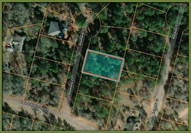 107 Olomana Ct, Bastrop, TX 78602 (#4607148) :: Papasan Real Estate Team @ Keller Williams Realty