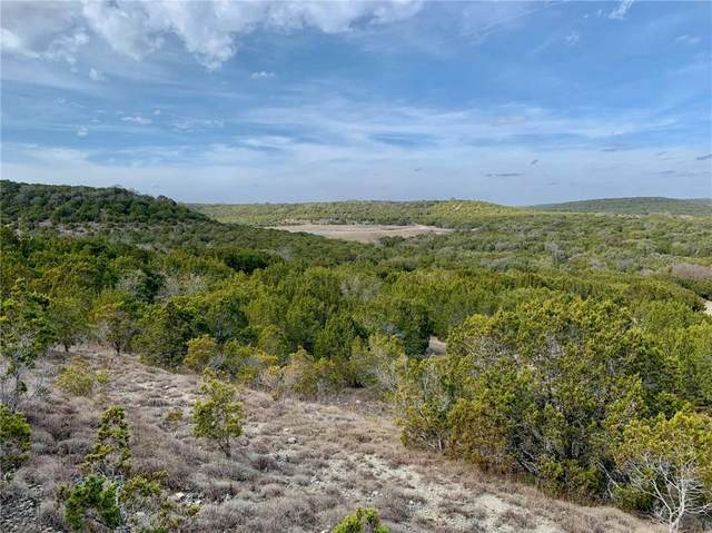 105 Woodhollow Dr, Bertram, TX 78605 (#4611129) :: Realty Executives - Town & Country