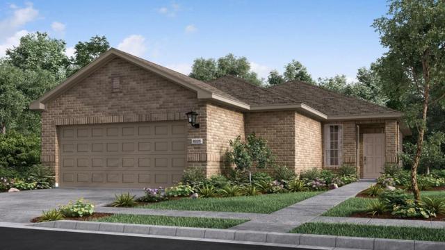 5105 Lunata Way, Round Rock, TX 78665 (#4630177) :: Papasan Real Estate Team @ Keller Williams Realty