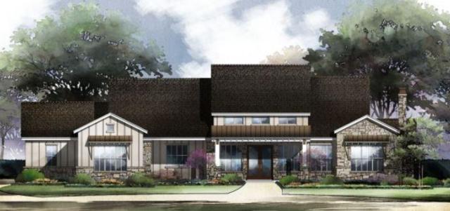104 Harvest Dance, Liberty Hill, TX 78642 (#4632523) :: Ana Luxury Homes