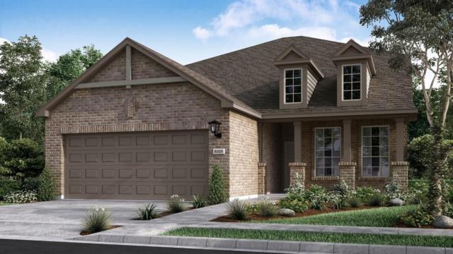 5055 Cassia Way, Round Rock, TX 78665 (#4633705) :: Forte Properties