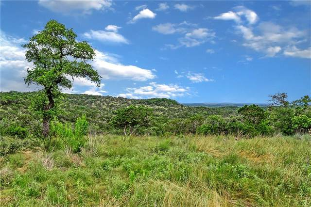 22.5 acres W Lakeshore Dr, Dripping Springs, TX 78620 (#4657114) :: Watters International