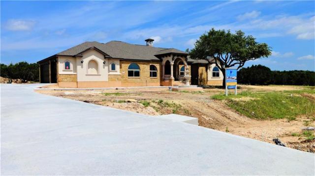 230 Joya Dr, Liberty Hill, TX 78642 (#4676762) :: Zina & Co. Real Estate