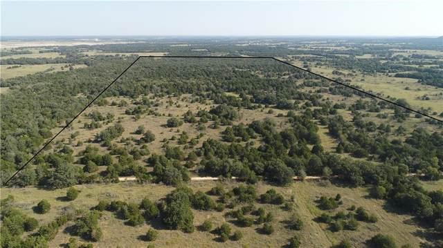 00 County Road 102 Tract 120, Mcdade, TX 78650 (#4693407) :: Papasan Real Estate Team @ Keller Williams Realty