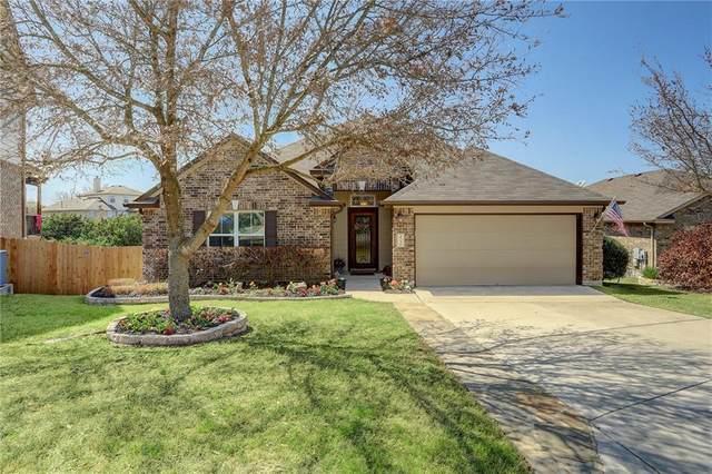 373 Stone View Trl, Austin, TX 78737 (#4695650) :: Zina & Co. Real Estate