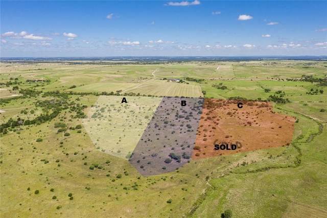 2685 County Road 212, Bertram, TX 78605 (#4696125) :: Lancashire Group at Keller Williams Realty