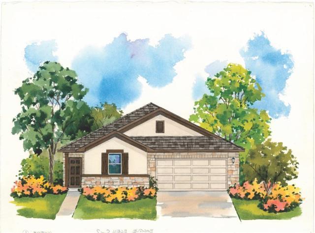 317 Tulum Terrace, Leander, TX 78641 (#4700041) :: 3 Creeks Real Estate